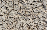 Texture of dry land close-up