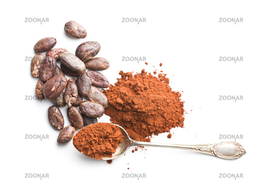Tasty cocoa powder and beans.