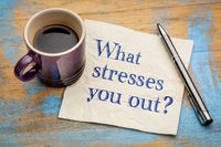What stresses you out?