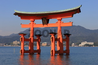 Torii, Shinto Shrine