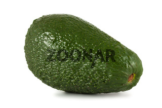 Ripe green avocado