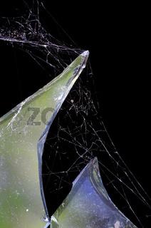 piece of broken glass