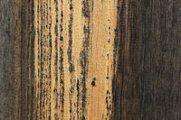Texture of the old dry pine boards 20549