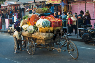 indische Rikscha voll beladen mit Gemüse und Obst, Nordindien, Indien, Asien - rickshaw fully laden with fruits and vegetables, North India, India, Asia