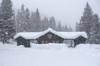 heavy snow ... Yellowstone-Nationalpark *Northeast Entrance*