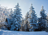 New Year's morning in the Czech Tatras