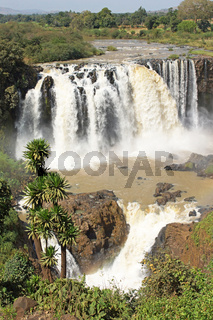 Wasserfälle des Blauen Nils, Bahar Dar, Äthiopien