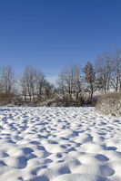 Snow-covered moor meadow in the Tölzer Land