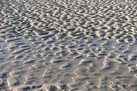Ripple Marks on the North Frisian Island Amrum in Germany