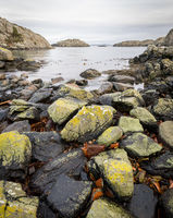 Rocks covered in lichen, the ocean and islands in the background. Urd island at the Rovaer archipelago in Haugesund, norwegian west coast. vertical image