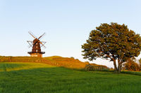 Windmill on hill at golden hour