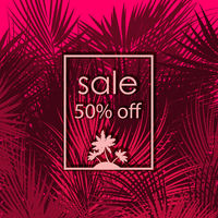 Sale 50 percent off on palm tree background.