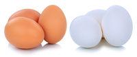 Braune und weisse weiße Eier Freisteller freigestellt isoliert