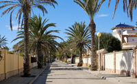 Empty palm-lined street of Cabo Roig. Costa Blanca. Spain