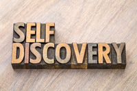 self discovery word abstract in wood type