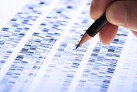 Scientist analyzes DNA gel