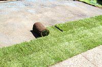 Lay turf roll