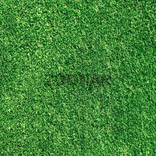 green gras texture