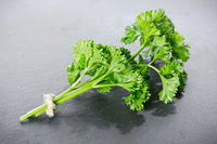 Parsley, Petroselinum crispum