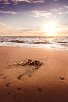 Beach at Hirtshals