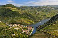 The town of Pinhão surrounded by terraced vineyards in the Douro Valley, Pinhão, Portugal