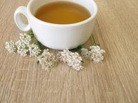 Herbal tea with yarrow