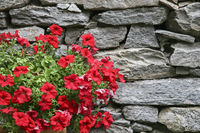 Flower decoration with natural stone wall