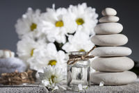 Chamomile essential oil, bouquet of chamomile flowers and stack of rocks
