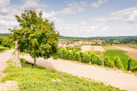 Wine-growing district in Franconia