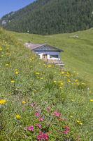 Tanner hut in the Benediktenwand area