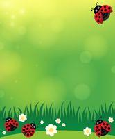 Spring background with ladybugs 2