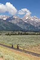 Cyclist Ride Bicycles Down a Path Grand Tetons