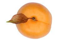 Aprikose Frucht von oben Freisteller freigestellt isoliert
