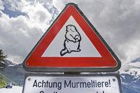 Attention marmot danger