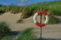lifesaver on the beach