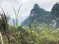 green grass and karst mountain in Yangshuo