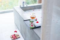 spa tub in modern spring bathroom