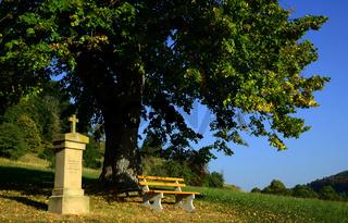 Wegkreuz an Lindenbaum