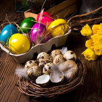 easter eggs and daffodils