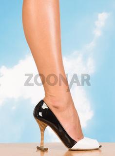 Sexy Women Leg