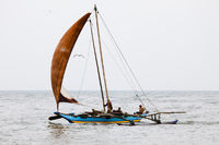 Sailboat - Negombo, Sri Lanka