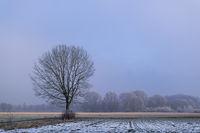 Winterliche Landschaft im Münsterland