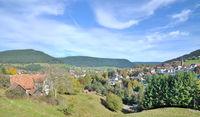 D--Schwarzwald--Baiersbronn (3).jpg