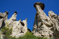 Nature phenomenon and nature miracle Stone Mushrooms rocks in Altai mountains near river Chulyshman