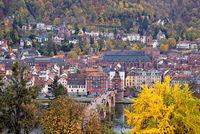 1 BA Heidelberg Stadtansicht mit Kirche.jpg