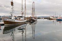 Iceland, fishing cutter in the harbour of Húsavík
