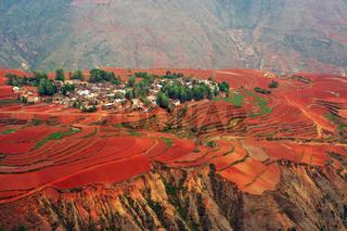 Village on red field