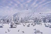 Schneekoppe im Winter - mountain Sniezka in winter