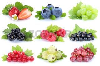 Sammlung Beeren Früchte Trauben Weintrauben Erdbeeren Himbeeren Johannisbeeren Freisteller freigestellt