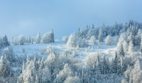 Winter Ukrainian Carpathian Mountains landscape.